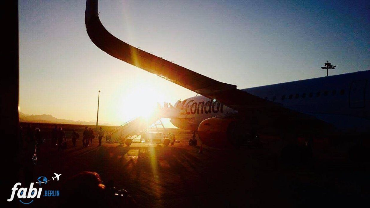 Condor flight to hurghda from berlin